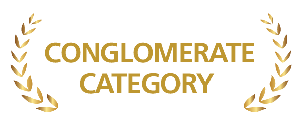 conglomerate category
